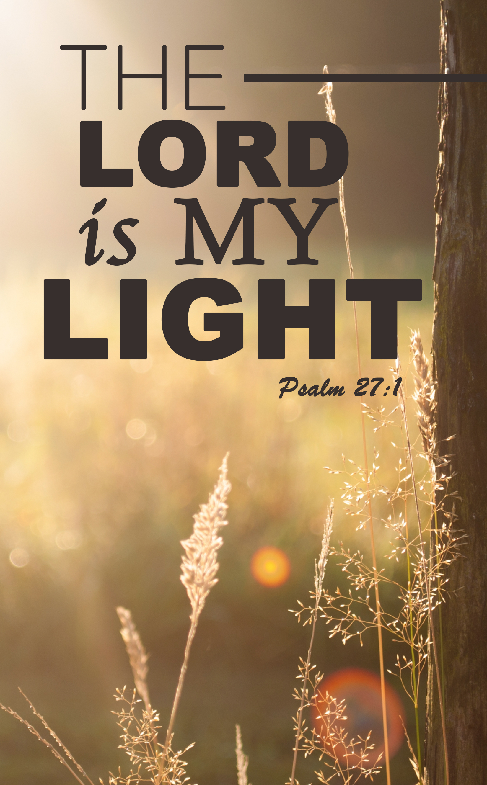 The Lord Is My Light Bulletin Cover Christian Buzz Roundup